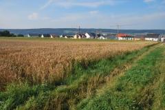Feld-zwischen-Stadion-und-Waldenbuch